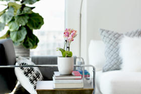 150 East Liberty Street Suite 1013 Liberty Village Toronto - Living room detail